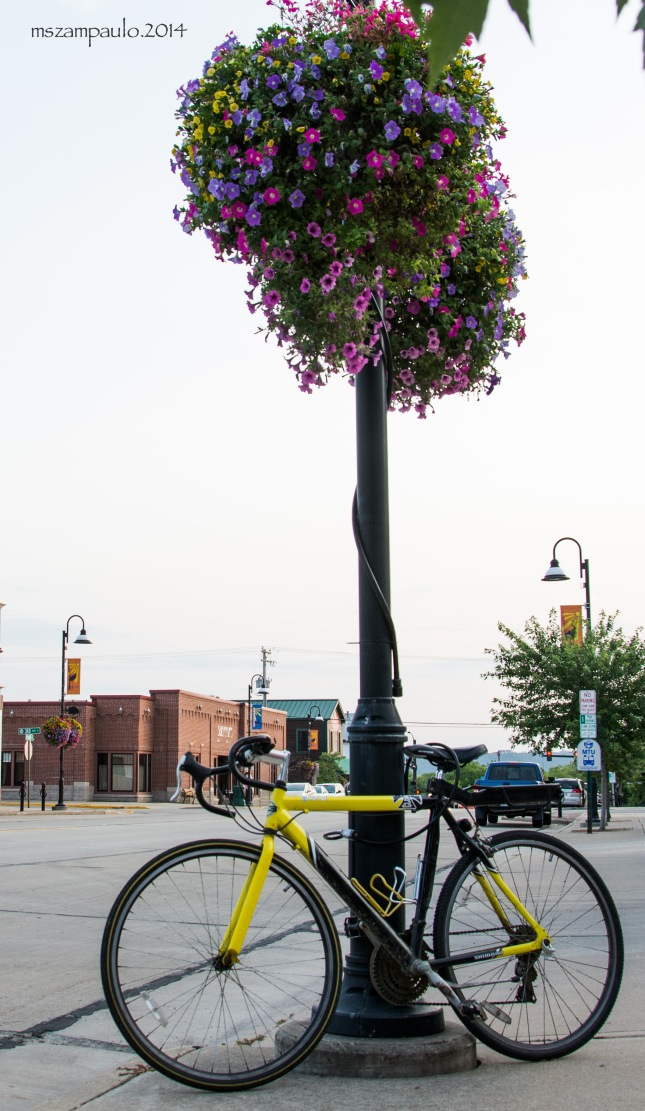 Day251_Yellow bicycle