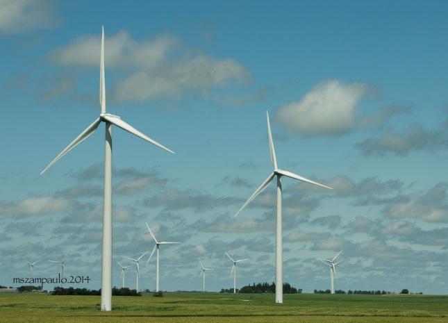 Day253_Wind turbines in Minnesota