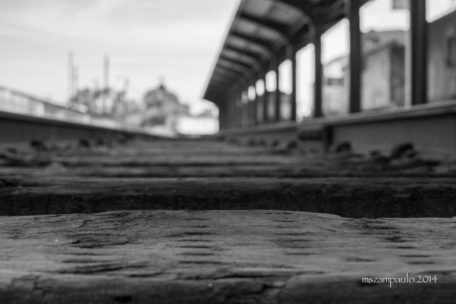 Day308_Tracks