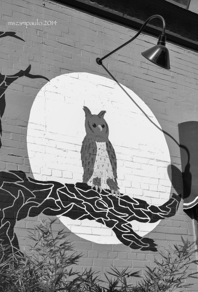 Day363_Night Owl
